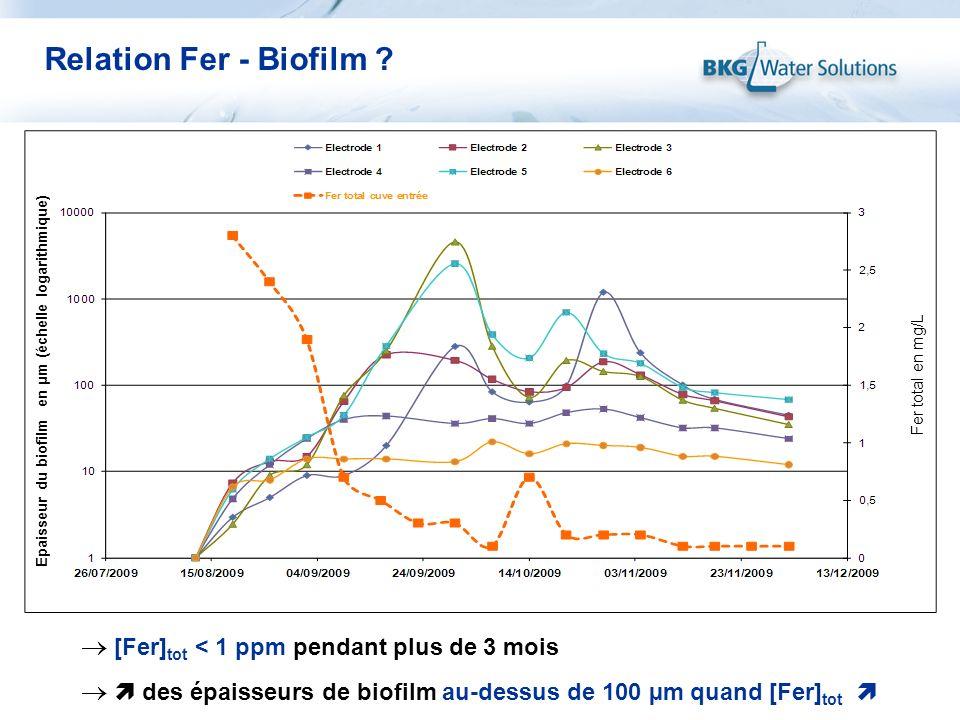 Relation Fer - Biofilm [Fer]tot < 1 ppm pendant plus de 3 mois